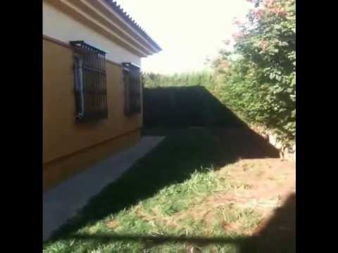 Chalet Olivar De Quintos Zona Cerrada Piscina Y Jardin Wmv