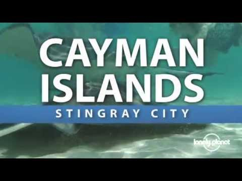 Stingray City - Cayman Islands - Lonely Planet travel video