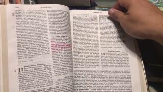 biblia VLIP LV