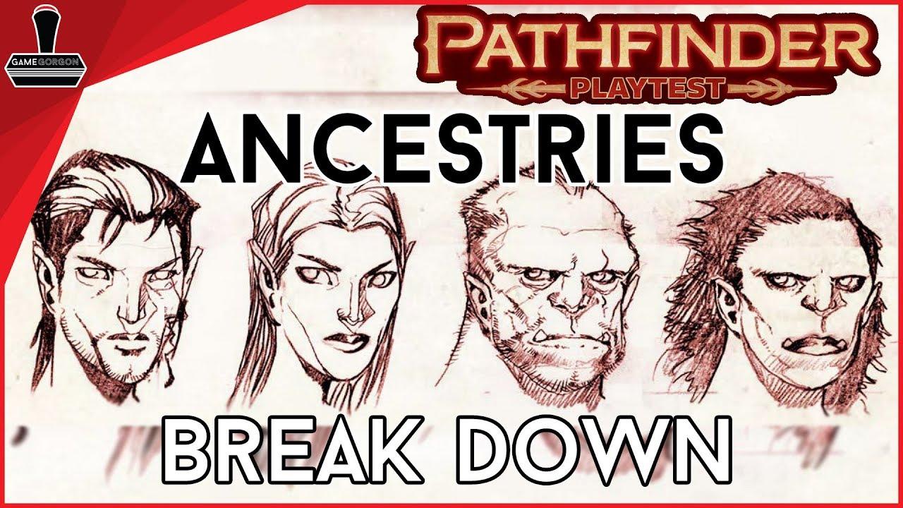 Ancestry Pathfinder 2e Playtest | GameGorgon