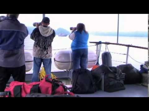 Video By Neil Hughs 2014 In Telegraph Cove, BC. Canada