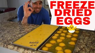HARVESTRIGHT-- Freeze Dried RAW 🍳Eggs🍳 Cost and Rehydrating