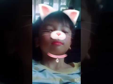 Ma mèo zombie
