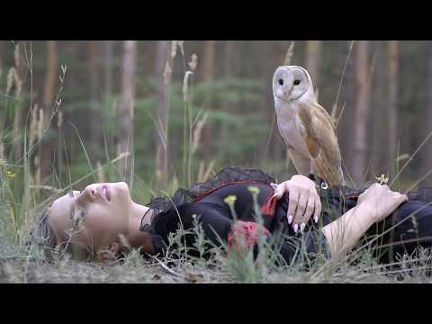 13.07.17 Сова СИПУХА:) Фото-видео-сессия с совой в лесу:) Video session with an owl in the forest