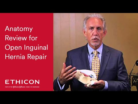 Anatomy Review For Open Inguinal Hernia Repair With ULTRAPRO® Hernia System