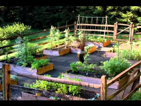 Small vegetable garden ideas youtube for Veggie garden designs