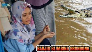 Banjir Pantura Blimbing Brondong Lamongan Terparah Sejak 3 Tahun Terakhir