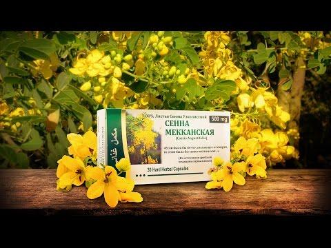 Трава сенна – лечебные свойства, применение, отзывы