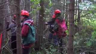 Les étudiant.e.s de la MGDEF durant un cours en forêt