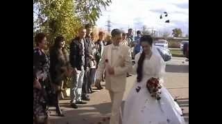 Проводим свадьбы в Волгограде и области.avi