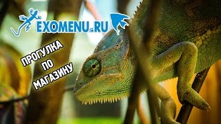 Видеообзор магазина ExoMenu.ru