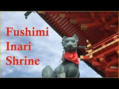 Surrounded By Fox Spirits! | Fushimi Inari Taisha