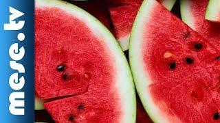 Kaláka együttes: Görögdinnye (animáció, dal)