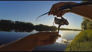 ВОТ ЭТО БОЛОТО!!!! ЩУКУ ЕЛЕ ВЫПЕР!!!Рыбалка в городе в кувшинках!