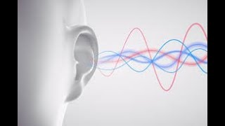 Sound Vibrations! (Listening to Reading)