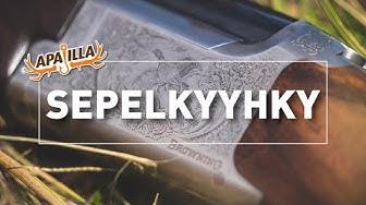 Jakso 8/2019 - Sepelkyyhky