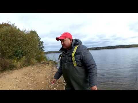 ловля фидером на десногорском водохранилище