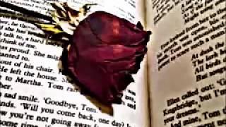 Helene Fischer - Goodbye my love until we meet again - with lyrics