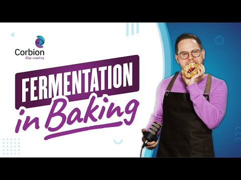 EP 15: Fermentation in Baking 101, Fresh Perspective Podcast