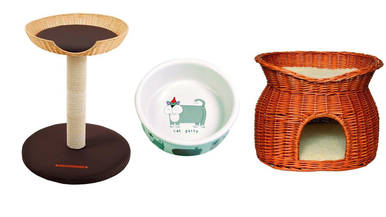 was brauchen katzen kratzbaum katzenklo und co youtube. Black Bedroom Furniture Sets. Home Design Ideas