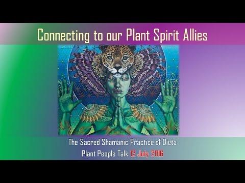The Sacred Shamanic Practice of Dieta