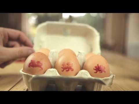 Baby loves eggs - British Lion eggs safe for all