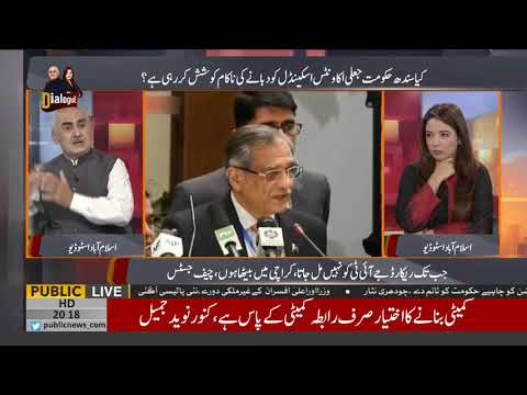 What Is The Inside Story Of Fake Accounts Case Know From Alina Shigri Haider