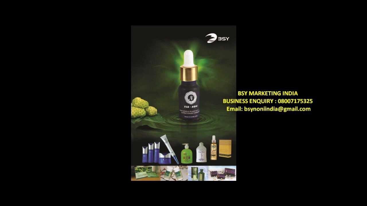 Divine noni business plan