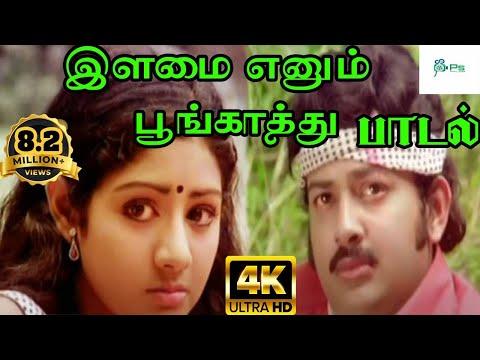 Ilamai Enum Poongatru--இளமை எனும் பூங்காற்று-S P Balasurahmanyam Melody H D Video Love Song