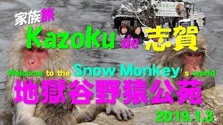 2018-2019年の年末年始。志賀高原にスキーに行って来ました。 その帰り...