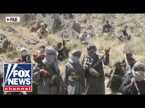 Taliban is mounting Afghanistan takeover: reports