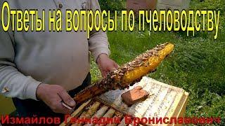 Пчеловодство для начинающих Ответы на вопросы по пчеловодству Измайлов Геннадий Брониславович