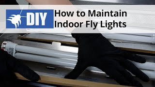 How to Maintain Fly Lights - Indoor Fly Control Tips