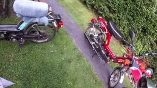 HARLEY BEE MOTORIZED BICYCLES...