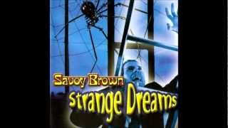 Watch Savoy Brown Cant Take It With You video