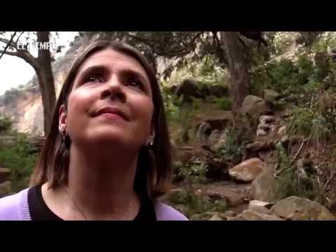 Tres momentos de libertad con Adriana Arango: El error