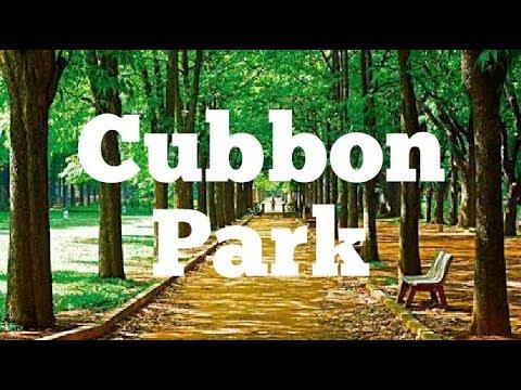 Cubbon Park Cycling