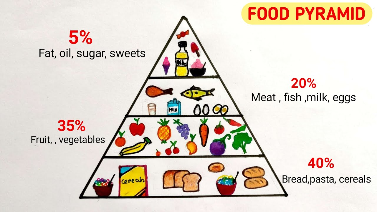 Food pyramid drawing / How to draw food pyramid / Food chart drawing for  project - YouTubeYouTube