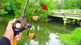 Searching for GIANT Bass in SMALL Canal (Bank Fishing)