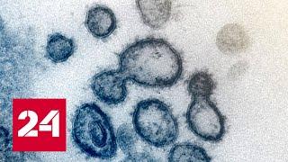 «Легкие в труху» и некроз мозга. Врачи о воздействии коронавируса на организм. 60 минут от 10.04.20
