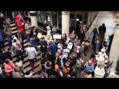 Les Chants de Coton - Flashmob Passage Pommeraye - Nantes