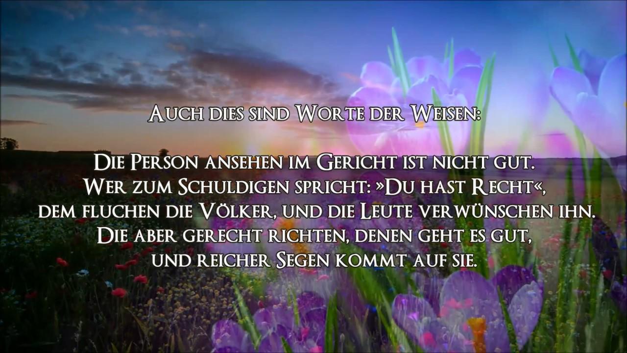 Beau Die Bibel/DIE SPRÜCHE SALOMOS Kap. 24