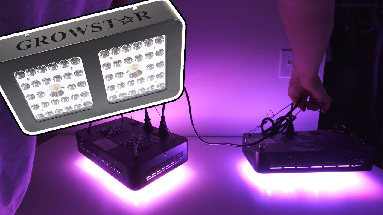 Growstar 600w Cree Cob Led Grow Light Review Youtube