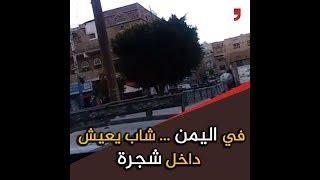 شاهد .. شاب يمني يعيش داخل شجرة...هذه قصته