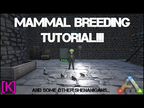 Ark Survival Evolved: New Beginnings:  Mammal Breeding Tutorial!!!