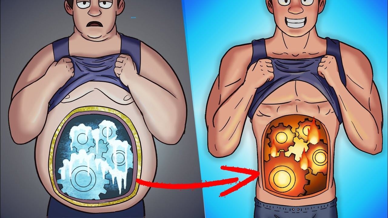 What Happens Inside Your Body While Burning Fat