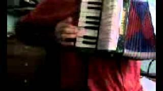 toy accordion