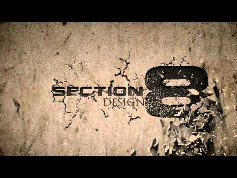 Section 8 Logo