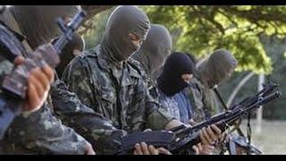 Батальон «Черкассы» перешел на сторону ополченцев
