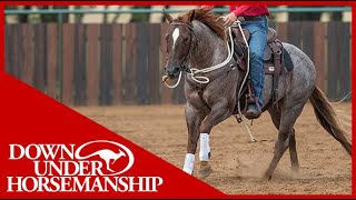 Clinton Anderson: Motivating a Slow Moving Horse - Downunder Horsemanship